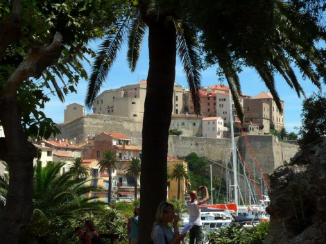 Palmy před centrem Calvi na Korsice